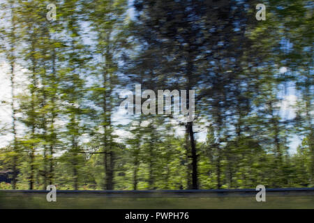 France, department 44, trees on the side of a road speed effect. - Stock Image