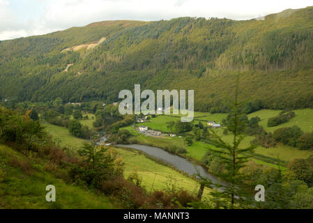 Rheidol Valley Railway, view down to Rheidol Falls from the train - Stock Image