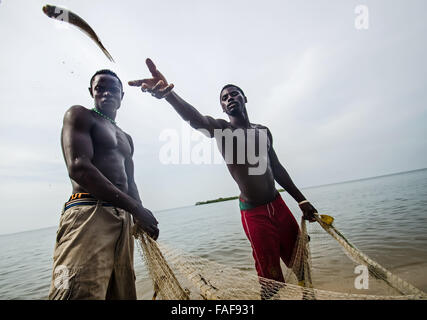 Fishermen collect their catch on Yele Island, the Turtle Islands, Sierra Leone. - Stock Image