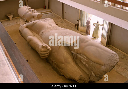 Colossal statue of Ramses II, lying on the ground. Ruins of Memphis. Egypt. Africa - Stock Image
