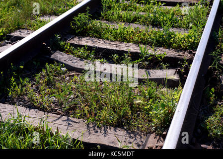 Old disused railway trackes with weeds and grass growing through the rail lines - Stock Image