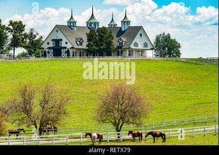Manchester Barn in Lexington Kentucky, most photographed barn in Kentucky - Stock Image