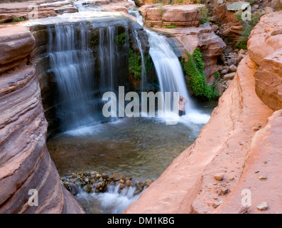 A man baths in a waterfall in a side canyon of the Grand Canyon. - Stock Image