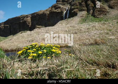 Seljalandsfoss: subsidiary waterfall -Southern Iceland - Stock Image