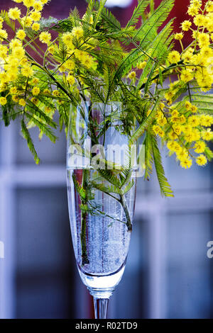 Still life with wild flowers - Stock Image