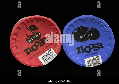 New York, November 12, 2018: Two tubs of Noosa yogurt on black background. - Stock Image