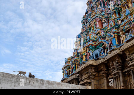 Monkeys and painted statues on one of the gopura (towers) of Kallalagar Temple, Madurai District, Tamil Nadu, India. - Stock Image