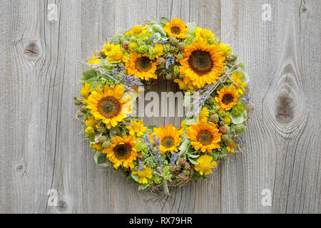 botany, sunflower, wreath decoration, No-Folded-Card or Greeting-Card or Postcard-Use, worldwide, unlimited time, - Stock Image