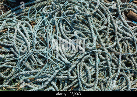 a tangle of abandoned fishing ropes - Stock Image