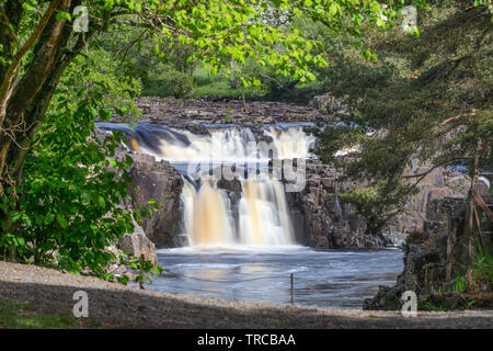 Low Force from the Pennine Way, Teesdale, County Durham, UK - Stock Image
