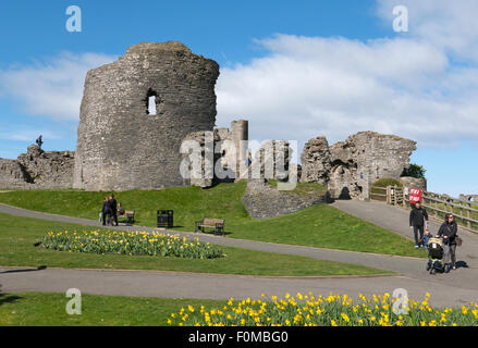 Aberystwyth castle ruins and daffodil flower beds, Wales UK. - Stock Image