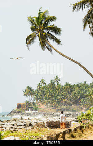 A man is walking on a beautiful and relaxing beach flanked by green palm trees during sunset while an eagle is flying over him. Varkala, Kerala, India - Stock Image