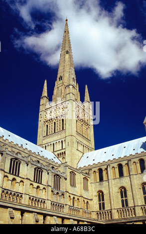 Norwich Cathedral Norfolk England - Stock Image