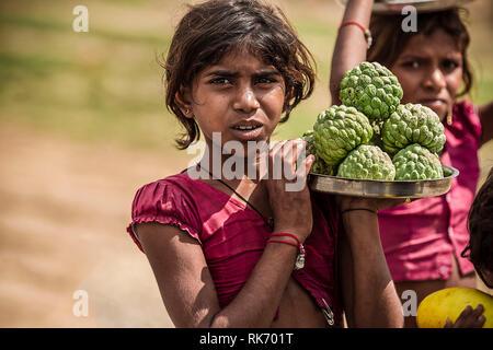 Young Rajasthani girls selling fruits - Stock Image
