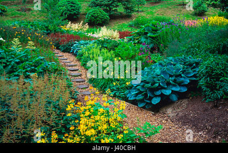 The bog gardens of a country house garden in early summer - Stock Image