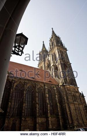 BLWX108356 [ (c) blickwinkel/McPHOTOx/PhotoPoster Tel. +49 (0)2302-2793220, E-mail: info@blickwinkel.de, Internet: - Stock Image