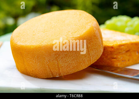 French cheeses collection, yellow Riche de Saveurs and Le peche des bons peres cheeses served with grapes on white marble plate outdoor in green garde - Stock Image
