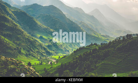 The sun breaks through the monsoon rain to light the lush green paddy fields up in the mountains of North Vietnam - Stock Image