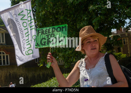 London, UK. 6th July 2018. A woman from the group 'We The Undersigned Have a Legal Right to use Cannabis'  hollds a small placard 'Freedom to Grow' at the protest in Old Palace Yard in support of Newport West Labour MP Paul Flynn's Private Member's Bill to allow the medical use of cannabis was expected to be debated this afternoon. Objections by MPs prevented the debate and it was pushed back until October. Credit: Peter Marshall/Alamy Live News - Stock Image