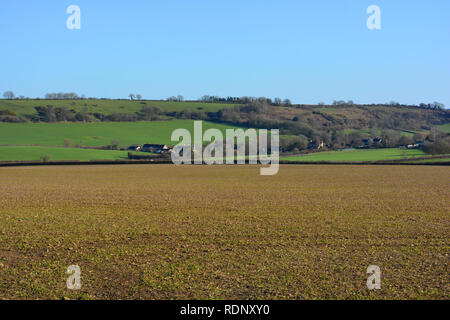 Rural agricultural landscape in winter, near Sherborne, Dorset, England - Stock Image