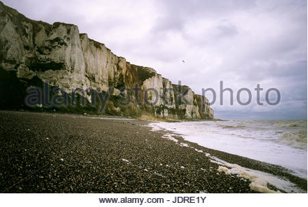 The white cliffs at Dieppe, France are among those that gave the Côte d'Albâtre its name. - Stock Image