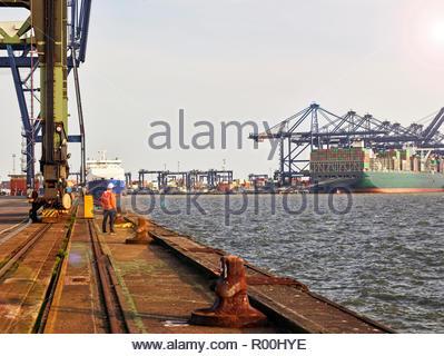 Dock worker looking at cargo ship under cranes - Stock Image