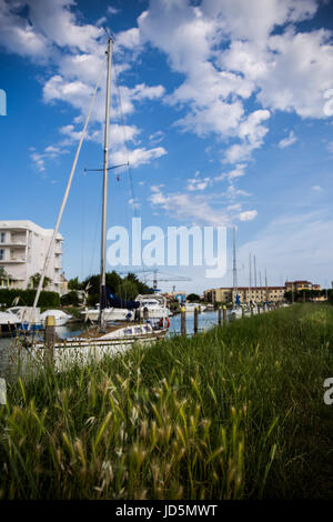 Grass with sailboats, boats and yachts moored at the dock in the background - Stock Image