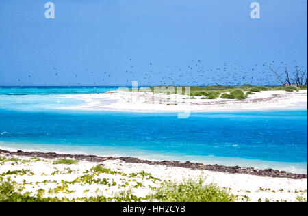 Brilliant blue waters flow between Bush Key and Garden Key in the Dry Tortugas. Bush Key is a bird nesting area - Stock Image