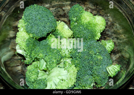 fresh broccoli - Stock Image