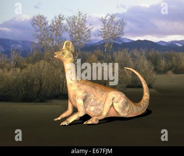 Dinosaurier Corythosaurus / dinosaur Corythosaurus - Stock Image