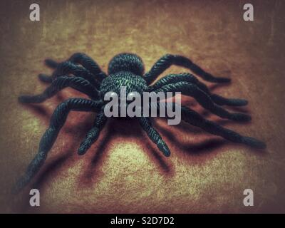 Hallowe'en themed big black spider on a dull grunge background - Stock Image