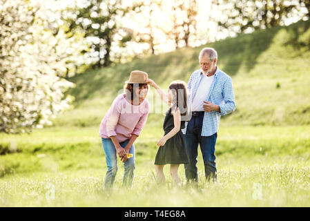 Happy senior couple with granddaughter outside in spring nature, having fun. - Stock Image
