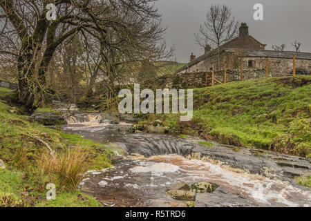 Ettersgill Beck and Dirt Pit Farm, Upper Teesdale, North Pennines AONB, UK - Stock Image
