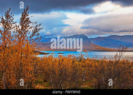 Cloudy autumn day at the shore of lake Torneträsk in Swedish Lapland. - Stock Image