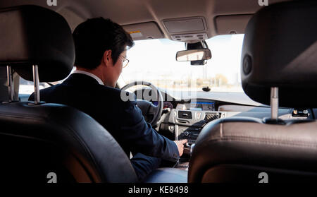 Back of businessman driving car - Stock Image