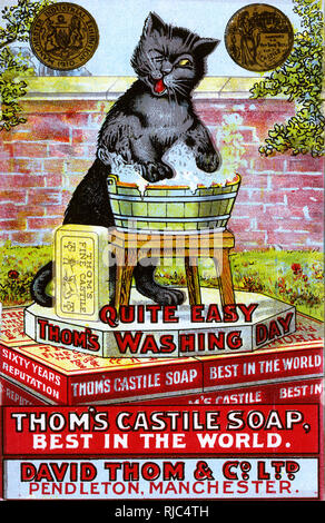 Advertising card by Louis Wain for the Gold Medal-winning Thom's Castile Soap - the 'Best in the World' - manufactured by David Thom & Co. Ltd. of Pendleton, Manchester. Featuring a cheeky black cat having no bother at all with the weekly washing... - Stock Image