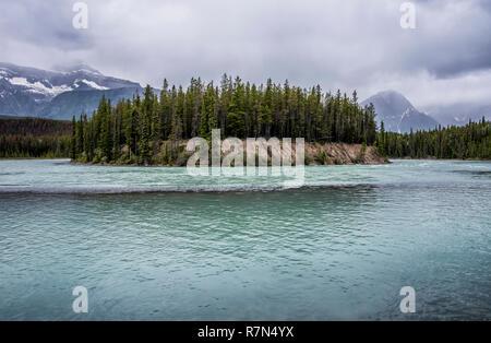 Island in Jasper National Park - Stock Image