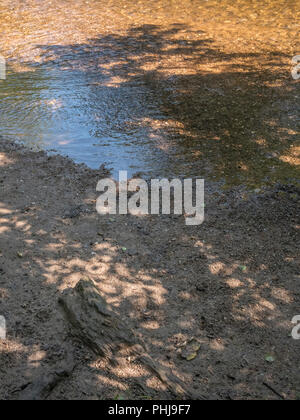 Shallow river bed. - Stock Image