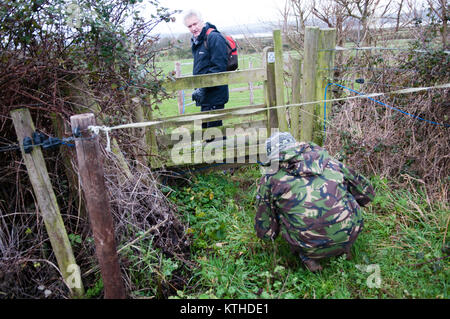 Two walkers trying to get past an electric fence in front of a public footpath and style in fields in the countryside - Stock Image