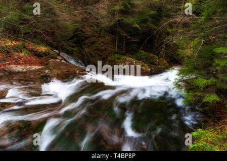 Landscape from Rhodopes mountain, forest and a river in front. beautiful scenery - Stock Image