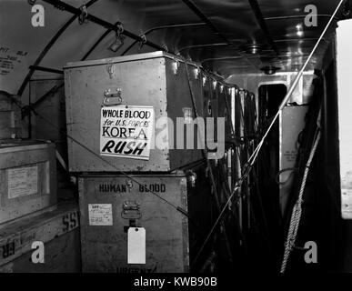 Air shipments of whole blood from American Red Cross for Korean War casualties. It will be stored in Yokohoma, for - Stock Image