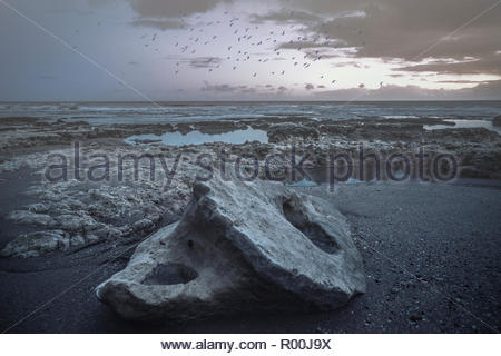 Rocks on beach in Portugal - Stock Image