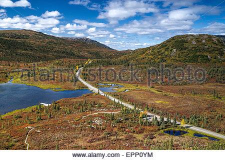 Denali national park road at Wonder lake heading to Kantishna - Alaska (USA) - Stock Image