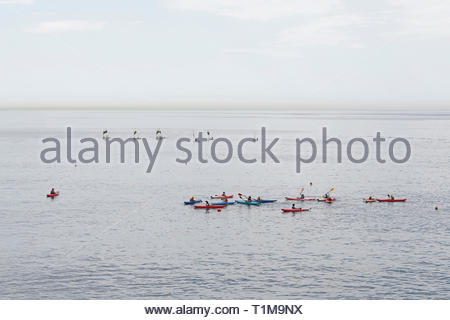 Canoeing and sailing lessons on ocean, Genoa, Liguria, Italy - Stock Image