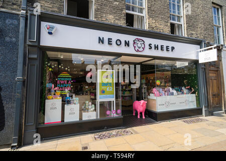 Neon Sheep shop Sidney Street Cambridge 2019 - Stock Image