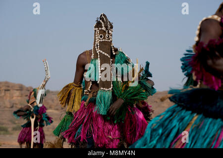 A Dogon man wearing a long, traditional mask at a ceremonial, tribal dance. Dogon country, Mali, West Africa. - Stock Image