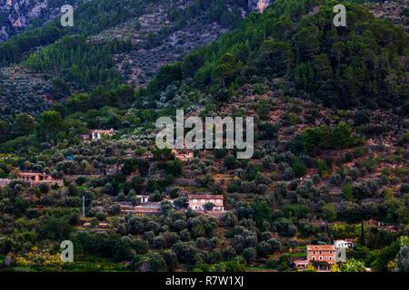 View of the hills of Sóller from Mirador des Puyol d'En Banya, Mallorca, Majorca, Balearic Islands, Balearics, Spain, Europe - Stock Image