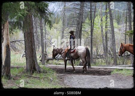 Cowboy with horse on a forest trail - Stock Image