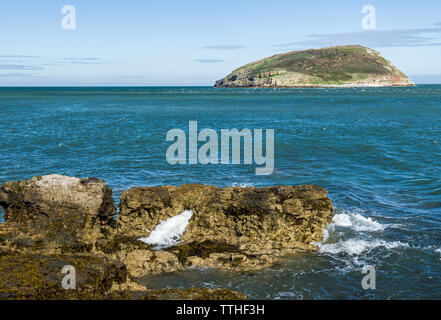 Puffin Island off the coast of Anglesey near Penmon on the south east coast, North Wales - Stock Image