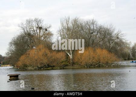 The Island on the Boating Lake Regents Park London - Stock Image